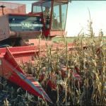Sandblasting-corn-harvester